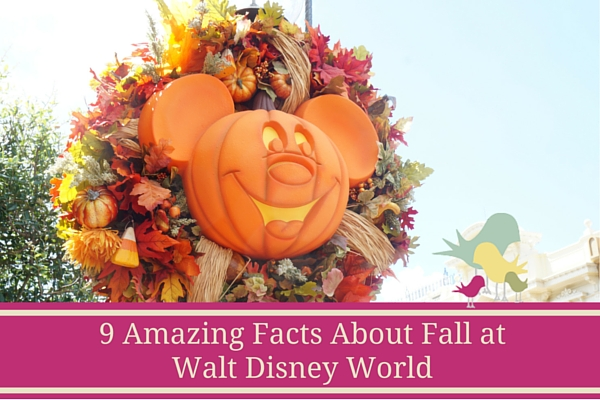 Amazing Facts about Fall at Walt Disney World - blog