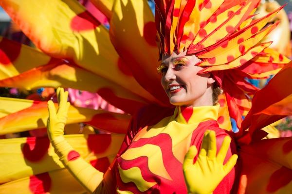 Festival of Fantasy - Costumes - David Roark WDW