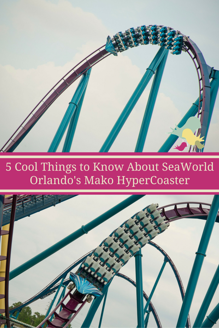 5 Cool Things To Know About SeaWorld Orlando's Mako Hypercoaster