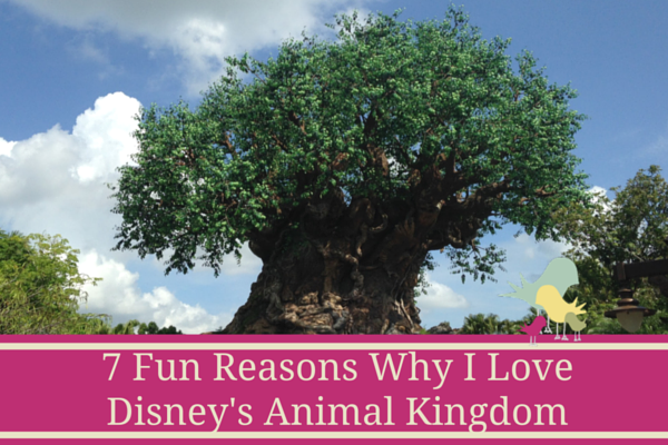 7 Reasons I love Disney's Animal Kingdom - blog