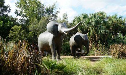jacksonville-zoo-gardens-elephant-statues