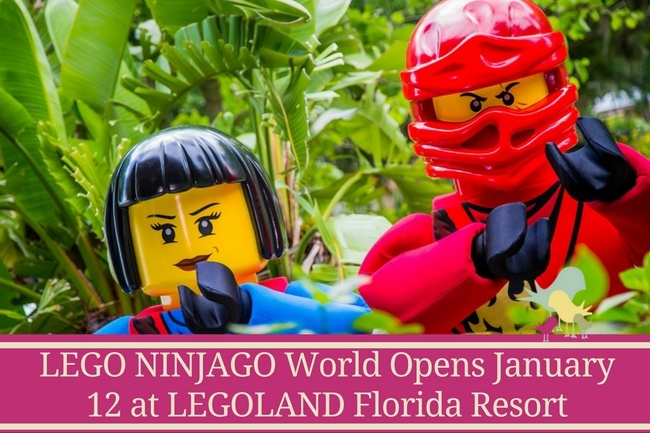 LEGO NINJAGO World - Opening Jan 12 - blog