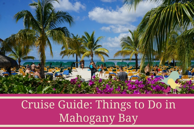 Cruise Guide- Things to Do in Mahogany Bay - blog