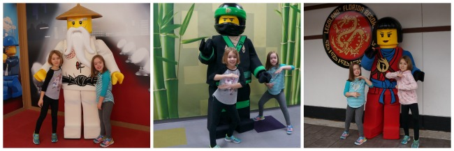 LEGO NINJAGO Character Collage