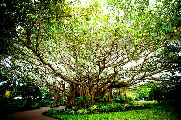 LEGOLAND Florida - Cypress Gardens