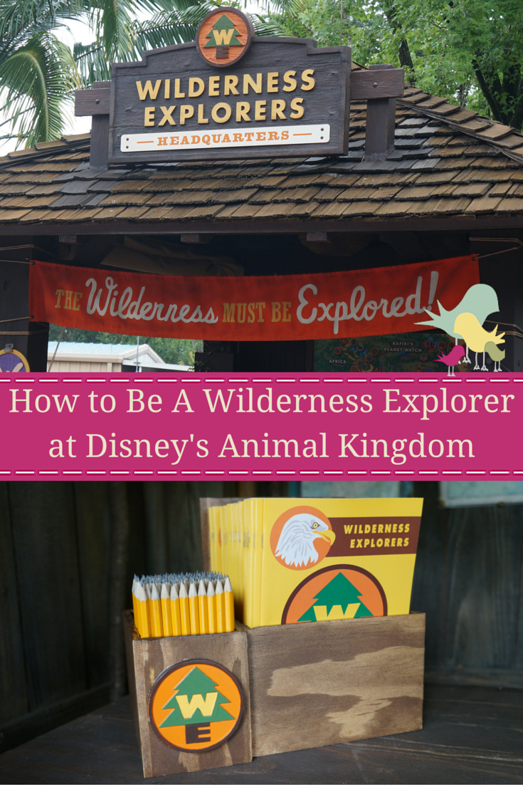 How to Be A Wilderness Explorer at Disney's Animal Kingdom