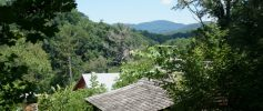 WNC Nature Center View